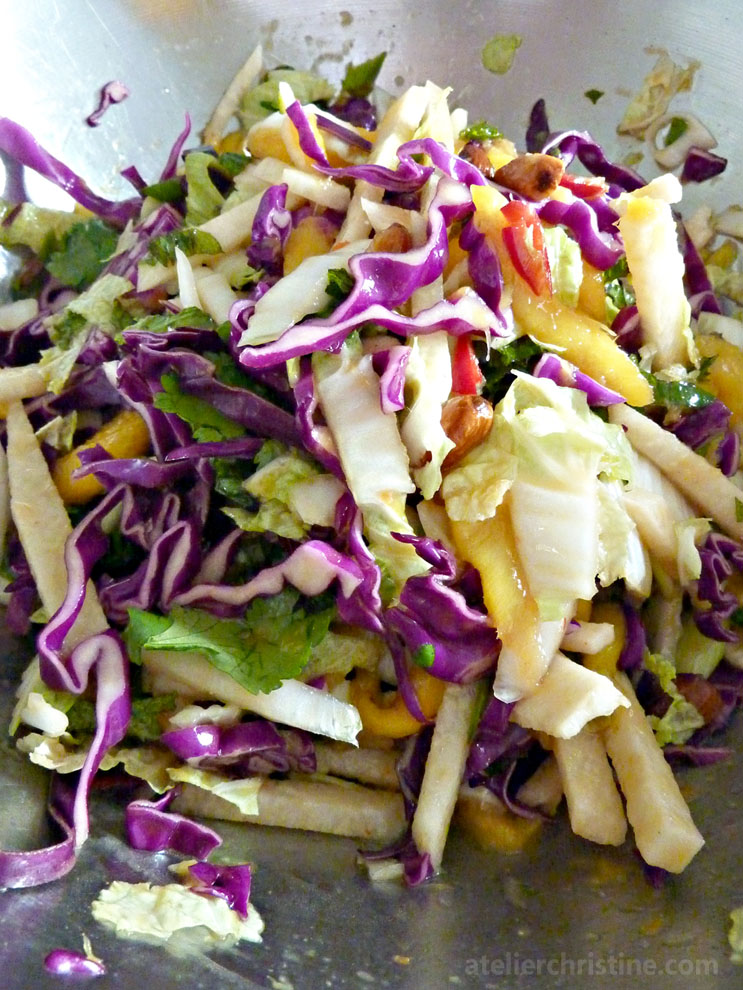 mint-mango-jicama-slaw-salad-coleslaw-napa-cabbage-asian-dressing-03 ...